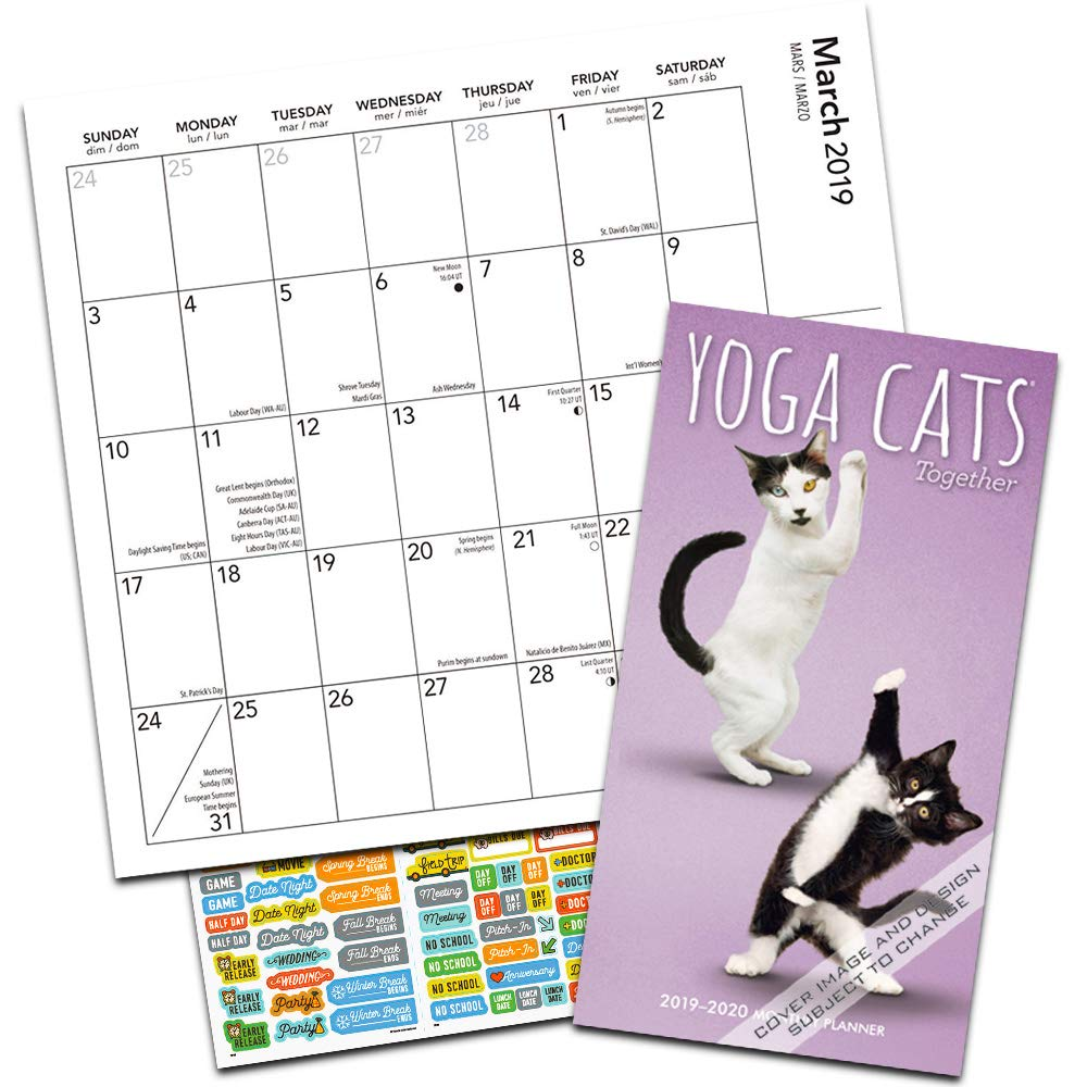 DateWorks Yoga Cats Monthly Pocket Planner 2019-2020 with DateWorks Calendar Stickers (Two Year DateWorks Cat Yoga Planner Calendar Bundle Set)