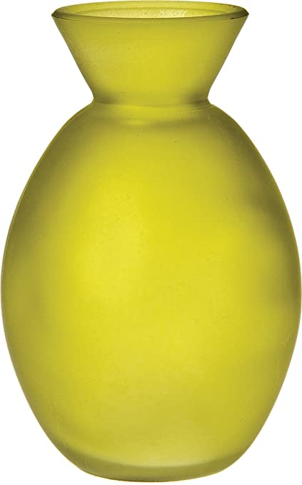 Amazon Luna Bazaar Frosted Glass Vase 4 Inch Oval Design