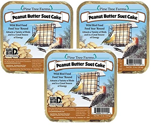 Pine Tree Farm Peanut Butter Wild Bird Suet Cake, 3-Pound (Pack of 3) by Pine Tree Farms
