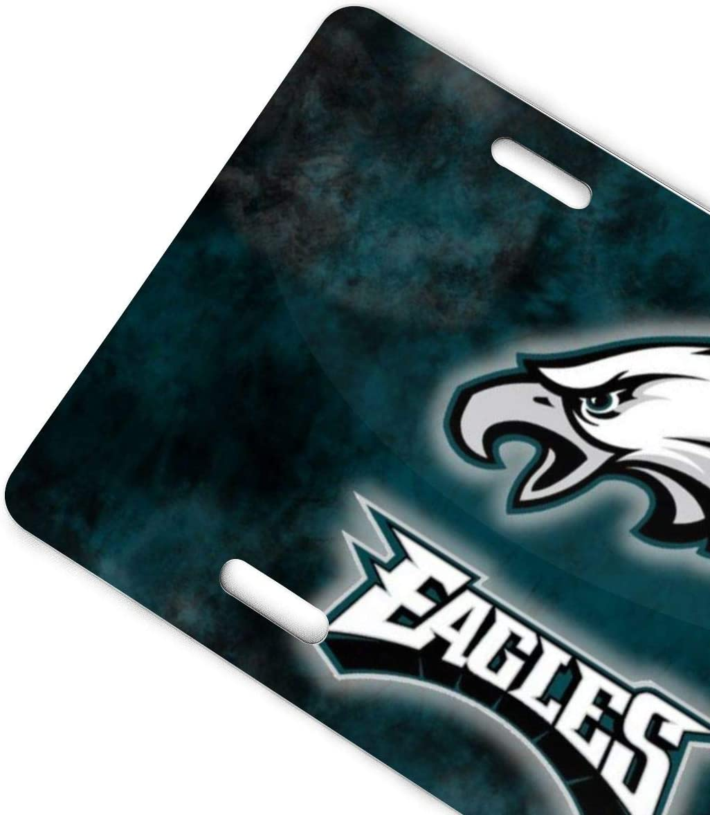Philadelphia Sport Teams Combined Logo Novelty License Plate Decorative Vanity Grey Aluminum car tag