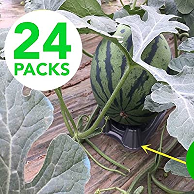 Plastic Melon Support (24 PCS) Plant & Garden Cradle for Watermelon-Pumpkin-Squash - Holds up to 20 lbs : Garden & Outdoor