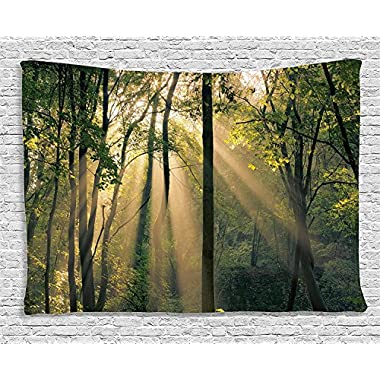 Tree Tapestry Country Decor by Ambesonne, Morning Sunrays Summertime Countryside Forest Woodland Scenic View, Bedroom Living Room Dorm Wall Hanging, 80 X 60 Inches, Green Beige Black