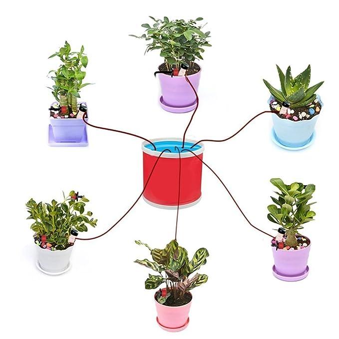 amison 8 pieza automático de riego, dispensador de agua para habitaciones de cerámica Planta pinchos de riego, Bonsai, plantas, flores: Amazon.es: Jardín