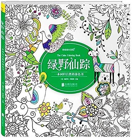 Libro de colorear The Wizard of Oz para niños y adultos, estilo jardín secreto, antiestrés, pintura para dibujar y colorear libros: Amazon.es: Hogar