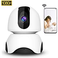 1080P Wireless Security IP Camera WiFi 2.4G Surveillance IP Camera for Pet Baby home Monitor, 3D Navigation Panorama View,Pan/Tilt, Two-Way Audio Night Vision Motion Detection Local&Cloud Storage (EC30)