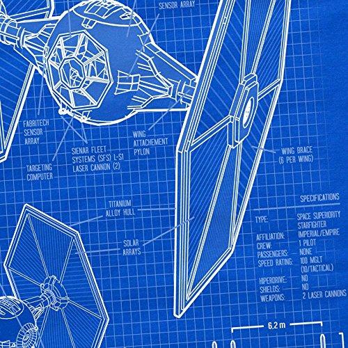 Ships camiseta Hormiga mujer azul luchador Tie Rq85aw8g