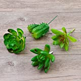 WINOMO 4 PCS Artificial Succulents Small Plastic