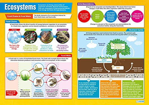 "(Ecosystems | Classroom Posters for Geography | Social Studies | Gloss Paper measuring 33"" x 23.5"", School Posters for the Classroom, Educational Charts, by Daydream Education)"