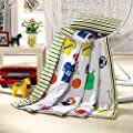 J-pinno Cartoon Printed Quilted Comforter Twin/Full for Kids Bedding