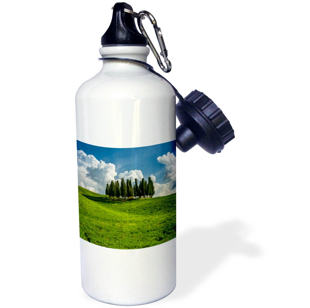 3dRose Danita Delimont - Italy - Italy, Tuscany, Pines hillside - 21 oz Sports Water Bottle (wb_277585_1) by 3dRose