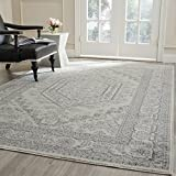 Safavieh Adirondack Collection ADR108B Ivory and Silver Area Rug, 8 feet by 10 feet (8' x 10')