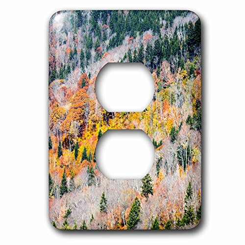 Blue Ridge 2 Light - Danita Delimont - Autumn - North Carolina, Aerial of Blue Ridge Parkway - Light Switch Covers - 2 plug outlet cover (lsp_231406_6)