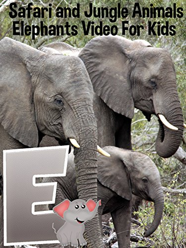 Safari and Jungle Animals - Elephants Video For Kids (Elephant African Jungle)