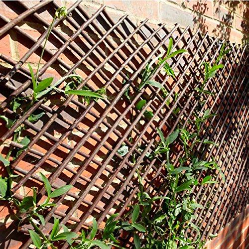 desertcart Oman: Gardening Naturally | Buy Gardening
