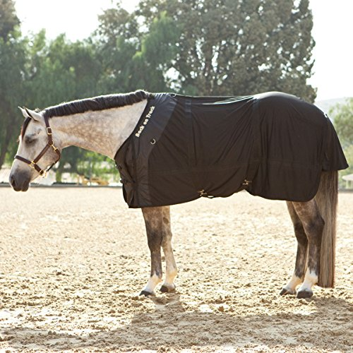 Image of Back on Track Therapeutic Mesh Horse Rug
