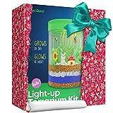 Light-up Terrarium Kit for Kids with LED Light on