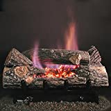 Rasmussen 18-inch Chillbuster See-thru Gas Log Set With Vent Free Propane Evening Embers Single Burner - Variable Flame Remote