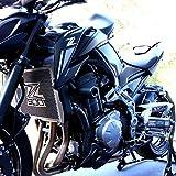 For Kawasaki Z900 2017-2020 arri/ère /à Tidy Num/éro de plaque dimmatriculation Support moto Fender Eliminator Kit Z900 2017 2018 2019 Color : Black