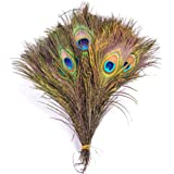 Real Peacock Feathers Perfect for Wedding Party Home Decorations and DIY Arts Crafts Dartphew 10pcs Natural Peacock Tail Feathers 10-12inch