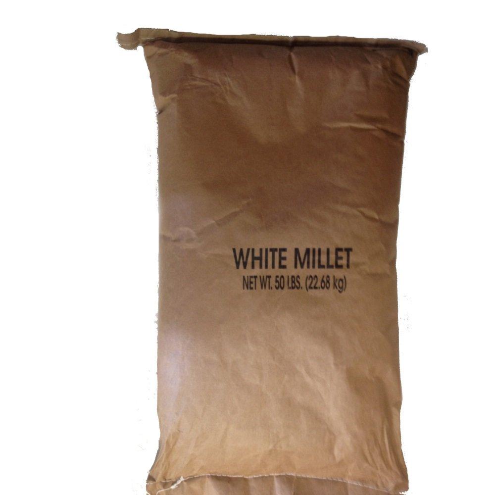 Shafer Seed 84075 White Proso Millet Wild Bird Food, 50-Pound