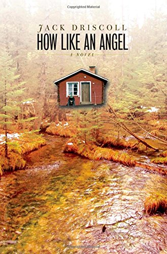 Download How Like an Angel: A Novel (Sweetwater Fiction: Originals) PDF