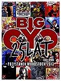 Big Cyc 25 Lat - Przystanek Woodstock 2013 (DVD + CD) live