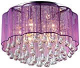 Whse of Tiffany RL7920-6 Erida 6-Light Chrome Ceiling Lamp