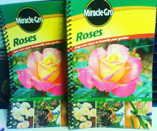 miracle-gro-roses-easy-care-roses-to-beautify-your-garden-miracle-gro-roses