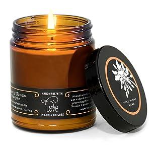 PURE PLANT HOME Apothecary Coconut Wax Large Amber Jar Ginger/Vanilla Planifolia