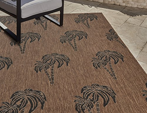 (Gertmenian 21264 Nautical Tropical Outdoor Patio Rugs, 5x7 Standard, Brown Palm)