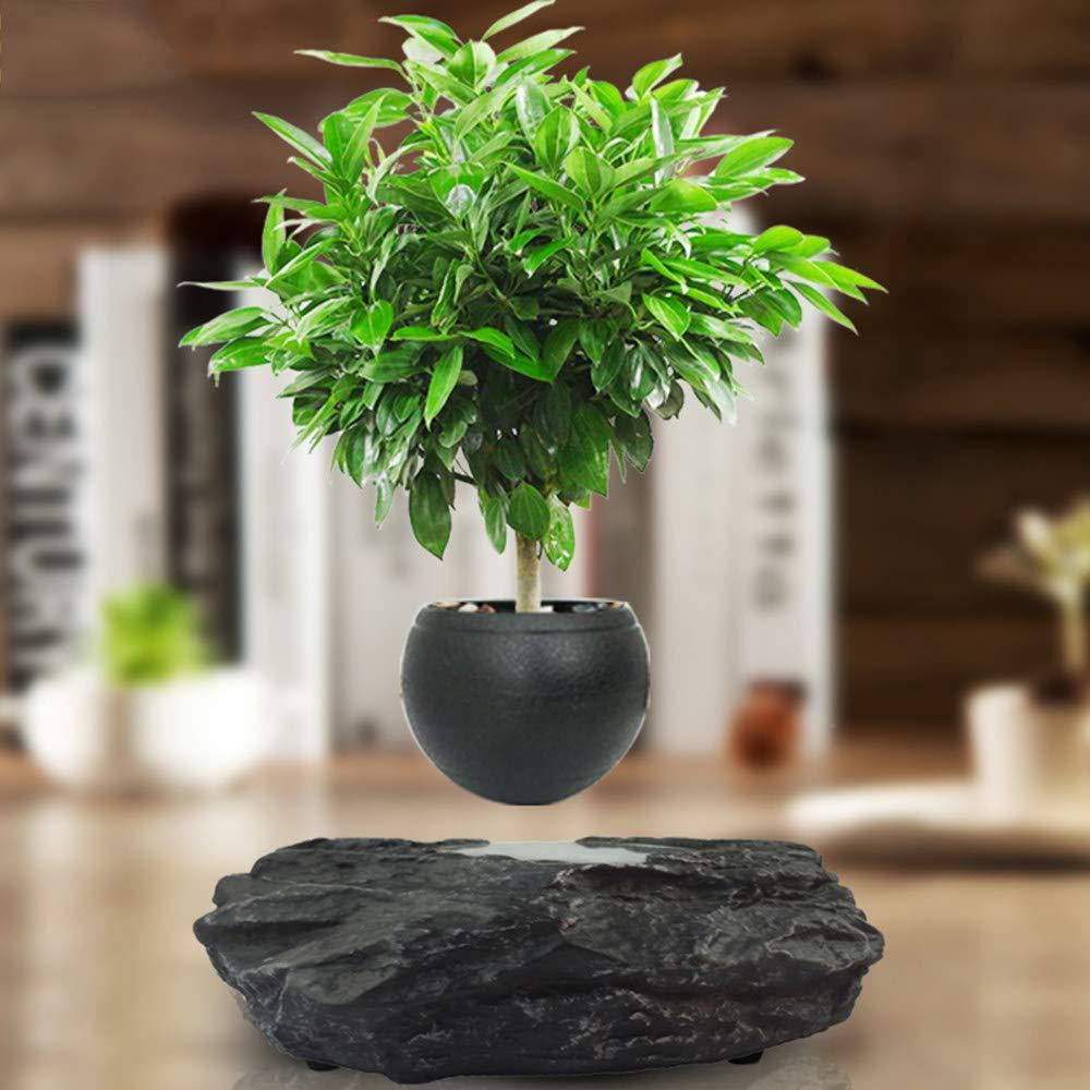 ZHIHUI Floating Bonsai Pot - Magnetic Suspension Levitating Air Flower Pots - Creative Design Levitation Bonsai - Home Office Decorations - Fun Gift,Black-Trumpet by ZHIHUI