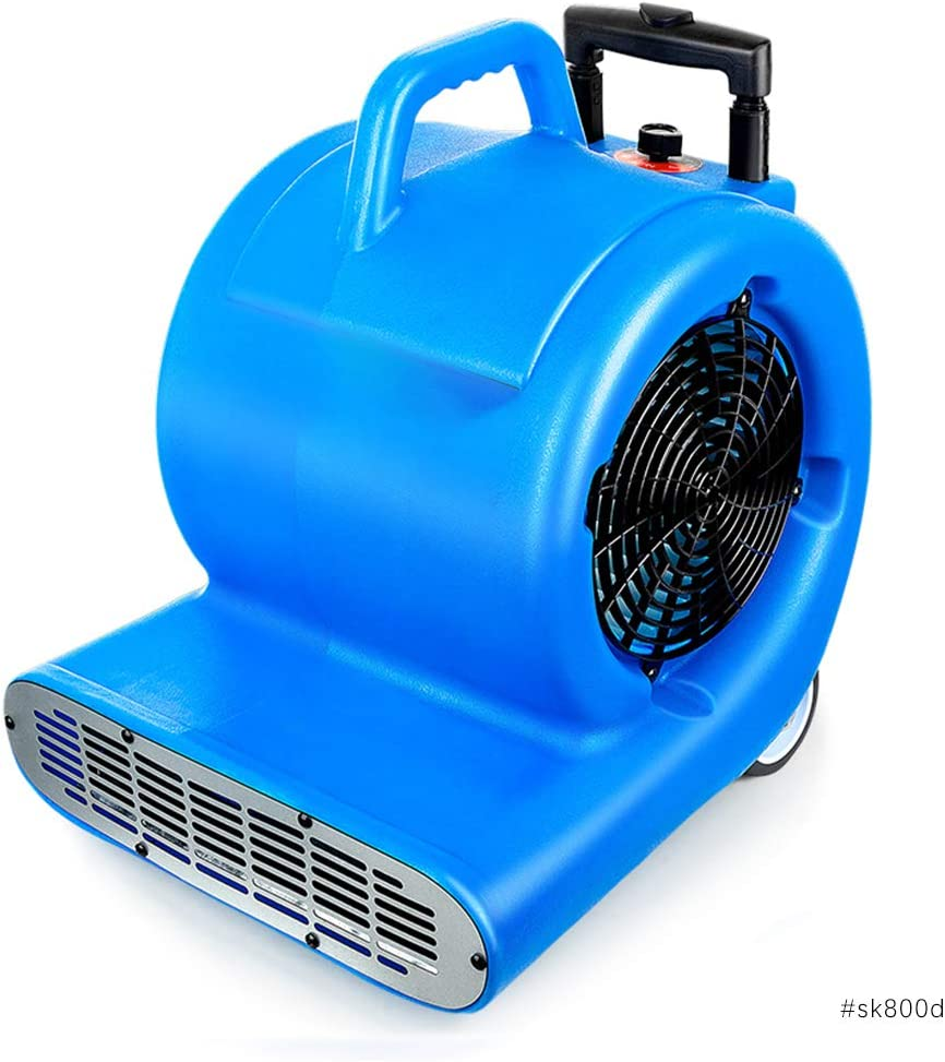 Even Ventilador Utilitario Ajustable En FríO Y Caliente, Secador, Ventilador De Secadora De Alfombras, Ventilador De Secado/VentilacióN De Superficie MultipropóSito, Ventilador De Aire, 3200 Vatio: Amazon.es: Hogar
