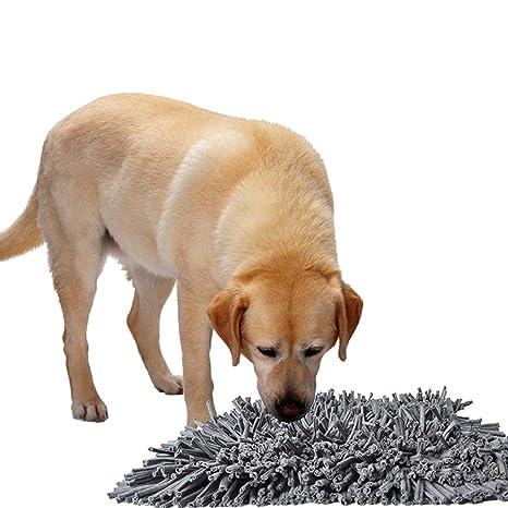 honmei - Alfombrilla de adiestramiento para Perros y Mascotas, Manta de Entrenamiento, Lavable,