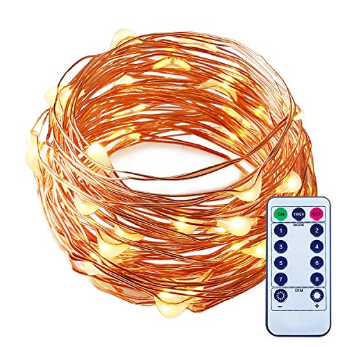 ITART LED String Lights with Remote,Dimmable Mini Fairy Lights Battery Operated 50 LEDs 16.7ft Warm White Ultra Thin Silver Wire Rope Lights for Christmas Trees Wedding Bedroom Garden Decoration