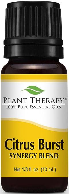 Plant Therapy Citrus Burst