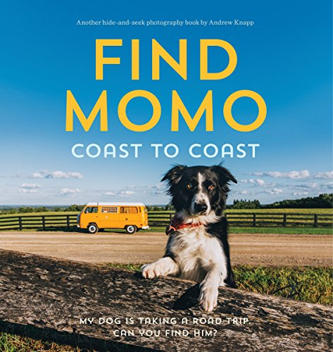Border Collie Portrait (Find Momo Coast to Coast: A Photography Book)