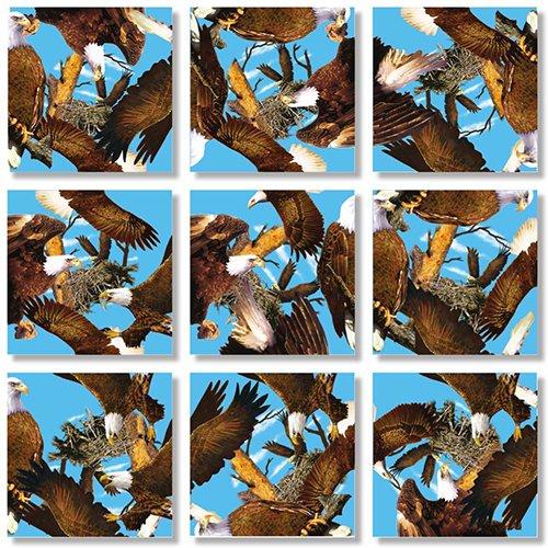 Square Nine (B Dazzle Bald Eagles Scramble Squares 9 Piece Puzzle)