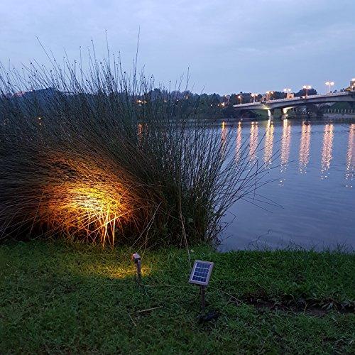 HEX 30X Twin Solar Spotlight Warm White LED for Outdoor Garden Yard Landscape Downlight by Solar Light Mart (Image #7)