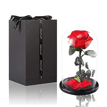 newest 00211 02661 Tumao Ewige Rose Rot,