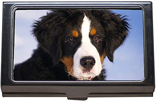New Dogs Business Credit Card Holder Case