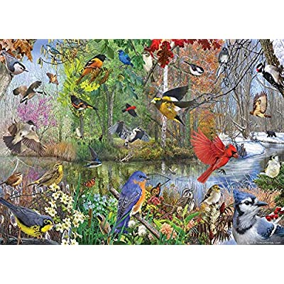 Cobble Hill Puzzles Birds of The Season 1000 Piece Animals & Wildlife Jigsaw Puzzle: Toys & Games