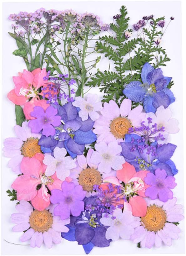 Milisten 30pcs Real Dried Pressed Flowers,Pink Purple Larkspur Natural Pressed Flowers for Scrapbooking DIY Candle Resin Jewelry Pendant Crafts Making