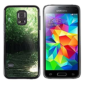 iKiki Tech / Estuche rígido - Nature Green Forrest - Samsung Galaxy S5 Mini, SM-G800, NOT S5 REGULAR!