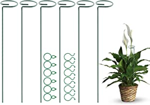 Puppy's Mom 6 Pack Plant Support Stakes, Single Stem Support Stake Garden Plant Cage Support Steel Ring with 12 pcs Clips for Flowers Hydrangea, Lily, Rose, Peony, Tomato (40 cm/16 inch Long) (6pack)