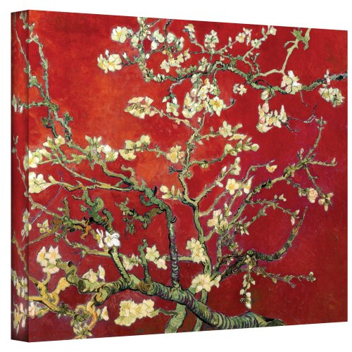 Branches of an Almond Tree in Blossom Canvas