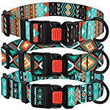 CollarDirect Nylon Dog Collar with Buckle Tribal Pattern Puppy Adjustable Collars for Dogs Small Medium Large (Pattern 2, Neck Fit 14'-18')