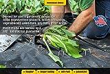 100 6-Inch Galvanized Garden Landscape Sod