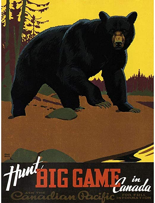 """Travel Bear Hunting Canadian Pacific Canada Framed Print Picture Mount 12x16/"""""""