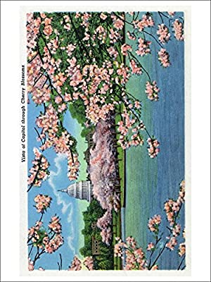 Washington DC - Vista of the Capitol through the Cherry Blossoms (Playing Card Deck - 52 Card Poker Size with Jokers)