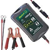 LST 12Vバッテリー充電器 バッテリーチャージャー メンテナンス充電器 3-30Ah用 全自動4ステージ充電 LEDランプ 逆接続&ショート&過電圧&過電流保護 (1.1A)